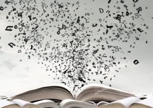 Miniatura per l'articolo intitolato:Insegnanti, società e professione
