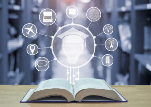 Miniatura per l'articolo intitolato:Valenze e dubbi sull'uso della formazione on line
